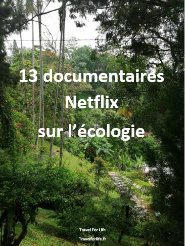 13 documentaires Netflix sur l'écologie